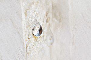 cearsil, impregnations, ceramics, concrete